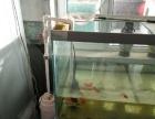 便宜处理鱼缸了!!?