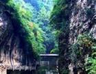 【阳坝梅园沟、西狭颂】3日游