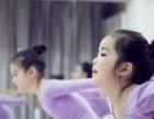 武汉青山徐东哪里有小朋友学舞蹈的地方