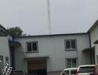 龙华山 叶王工业园区 厂房 144平米