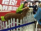江苏苏州租借矮马展示,江苏苏州租借香猪商业展示