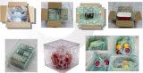 南宁价位合理的包装气泡膜批售_广西气泡膜