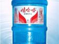 娃哈哈农夫山泉各品牌桶装水、瓶装水配送、套餐优惠中