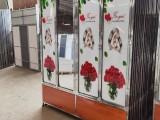 重庆市合川批发印花铁皮玻璃衣柜