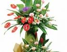 新加坡鲜花送花到泰国马来西亚鲜花预订吉隆坡送蛋糕