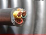 铜芯橡胶橡套弹性体软电缆3芯T-YZ 3*2.5平方国标厂家直销