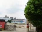出租金安区三十铺镇皋城东路厂房