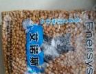转让猫咪没吃完的猫粮和没用的猫砂