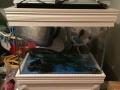 九成新鱼缸(草缸)割爱,带二氧化碳瓶