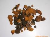 野生白桦茸 桦褐孔菌 桦树泪 100元/斤 黑龙江大兴安岭森林特