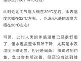四川直升机出租-成都直升机婚庆策划租赁