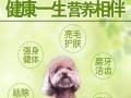 犬舍秘制去泪痕美毛配方天然混合型狗粮肉粒多8元一斤