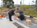 广西南宁正规殡葬服务公司