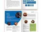 企业标志LOGO 宣传画册 海报 等平面设计