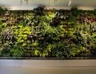 深圳北站白石龙仿真植物墙 仿真花绿植墙 公司logo植物墙