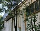独栋办公楼出租 面积1000平米28间还有仓库