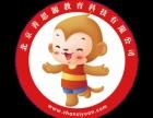 北京善思源幼小衔接全国免费加盟