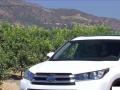 新款迈腾,GL8,包月优惠,免费送车