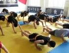 潍坊龙艺散打跆拳道搏击俱乐部,学员招募中