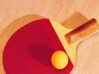 沈阳乒乓球培训(沈阳体育总局教练员一对一授课)