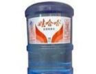 石井、康生源、娃哈哈、思圆大品牌不同价位桶装水配送
