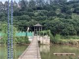 东莞周边春节期间适合旅游的地方-大朗万荔生态园