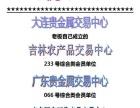 国龙金融集团自助建站 投资金额 10-20万元
