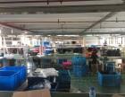 西湖三墩 厂房出租 700到1100方 仓库 办公 生产