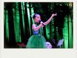 深圳龙岗吉祥紫薇花园碧湖玫瑰园里学唱歌如何提高音域的问题