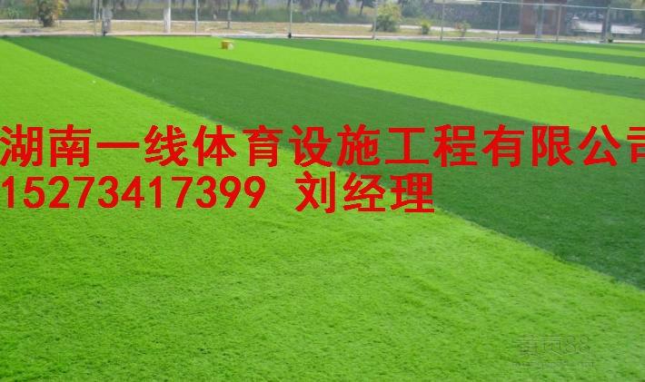 衡阳五人制足球场,十一人制足球场人造草施工报价 湖南一线体育