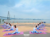 单色舞蹈专业瑜伽 爵士 拉丁 中国舞 肚皮舞 教练班培训基地
