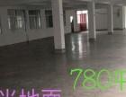 新店动物园附近 健康工业区厂房 780平米