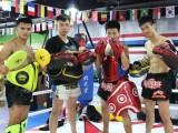 北京搏擊培訓班-北京拳擊培訓班-北京新的搏擊館