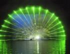 大型灯光亮化造型孔雀造型发光户外商场广场街道灯