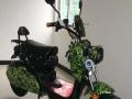绿安骐电动车 绿安骐电动车诚邀加盟