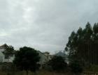 长潭旅游A区(福禄寿路)土地 1660平米