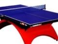 全新乒乓球台