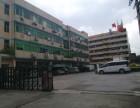 华南城附近原房东独门独院厂房出租
