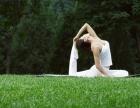 潍坊瑜伽肚皮舞健身会所 养生瑜伽 肚皮舞减肥瘦身