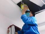 茂名专业白蚁防治 消毒杀菌 除虫灭鼠