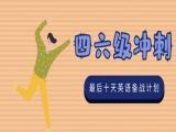 成都英語四六級培訓,自考英語培訓,考研英語培訓班一對一