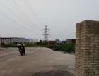 石头村对面华文停车场 仓库 6600平米