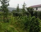 长沙县开慧乡人工湖旁边 土地 300平米