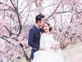 潍坊婚纱摄影,潍坊婚纱摄影工作室,性价比高的工作室