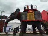 机械大象 机械大象租赁 机械大象供应商