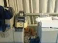 全新/二手证卡打印机PVC卡片工作卡吊牌制作印刷