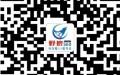 郑州营销型网站建设 网站优化专家-野狼网络赞一个!