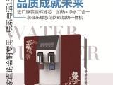 100G冷热一体自吸RO反渗透家用净水器农村净水机会销净水器