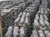 厂家长期销售供应优质野生驯化培育香菇食用菌种菌包菌棒浙江龙泉