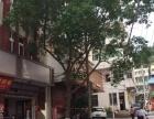 洞头区大门镇商业街两间店面共4层面积超大还有露台